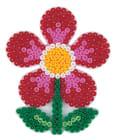 Piggplate blomst