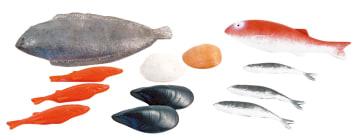 Fiskesett 12 forskjellige