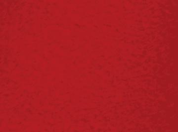 Fleece, 1,25 x 1,5 m. rød.