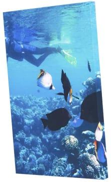 Tillegg for trykk på DecoDemp-Soft.  120 x 120 cm