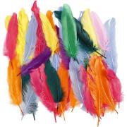 Indianerfjær, L:12-15cm, 350 stk. ass. farger
