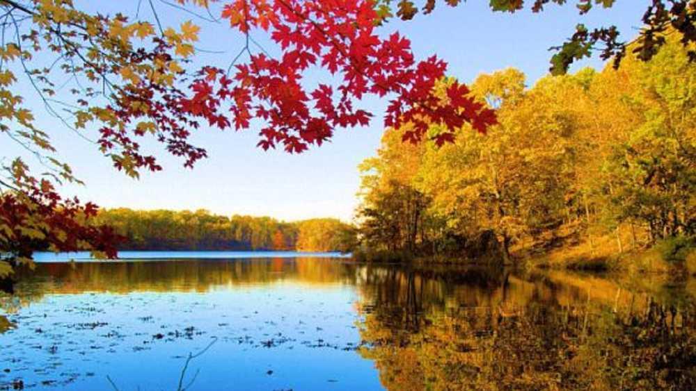 Brimley State Park   Michigan