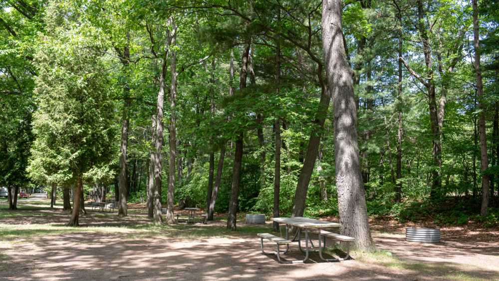 Campground at Sleeper State Park