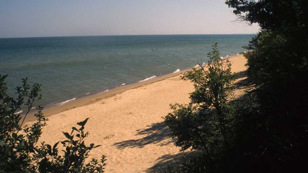 Beach on Saginaw Bay