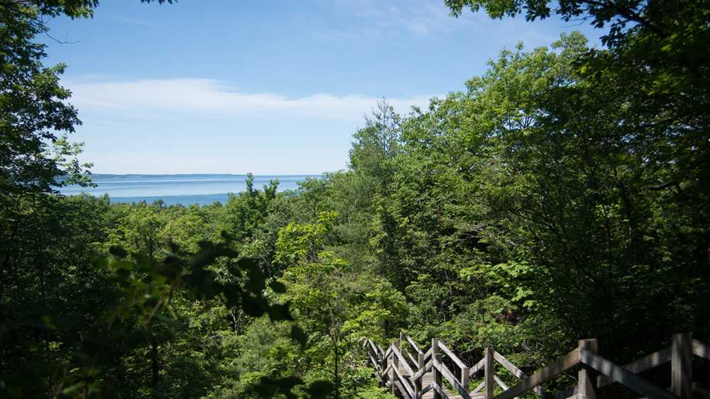 View of Little Traverse Bay over the treetops at Petoskey State Park