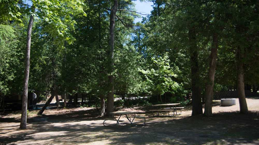 The tree covered campground at Petoskey State Park.