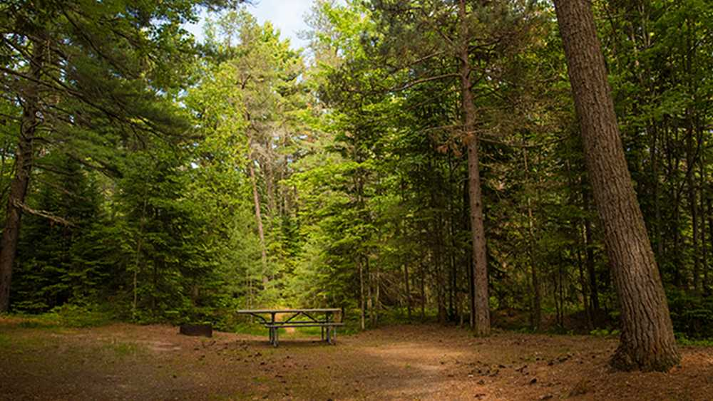 Big Knob State Forest Campground   Michigan