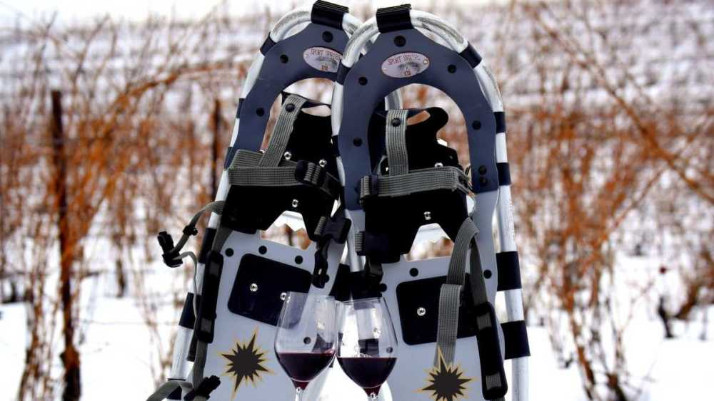 Black Star Farms Snowshoes, Vines & Wines!