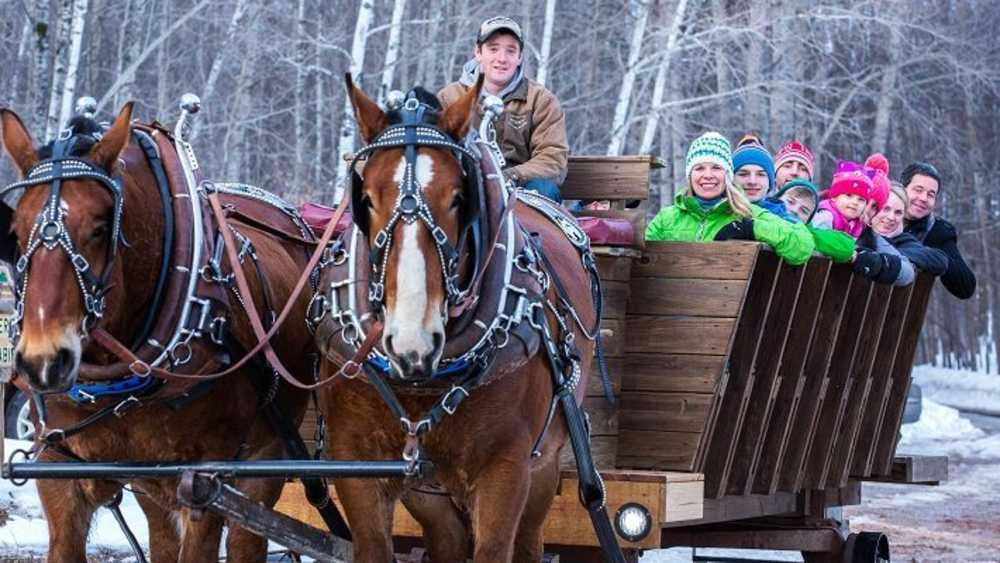 Sleigh Rides at Treetops Resort