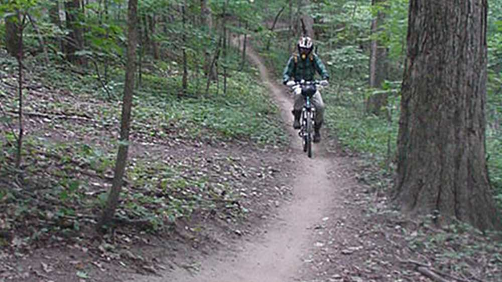 Mountain biker on a trail at Maybury State Park