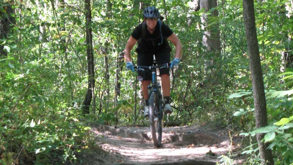 A mountain biker rides a path through the trees.