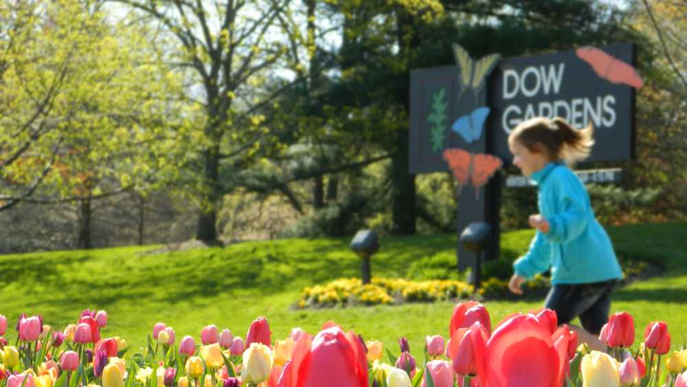 Dow Gardens | Michigan