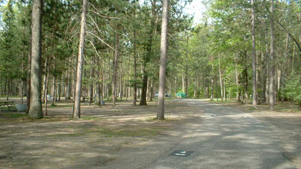 A tree covered campground at North Higgins Lake State Park