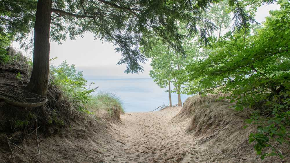 A view of Lake Michigan from the sand path