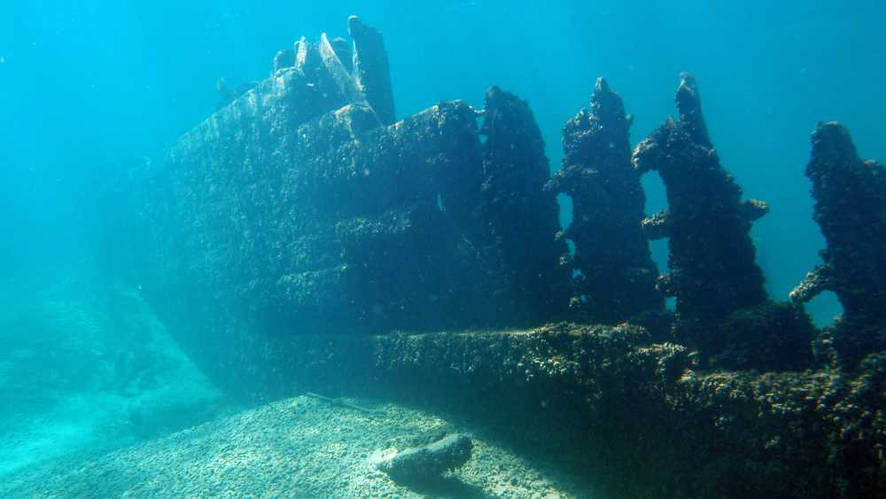 Alpena Shipwreck Tours - Photo 6
