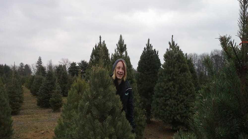 Rocky Top Christmas Tree Farm | Michigan
