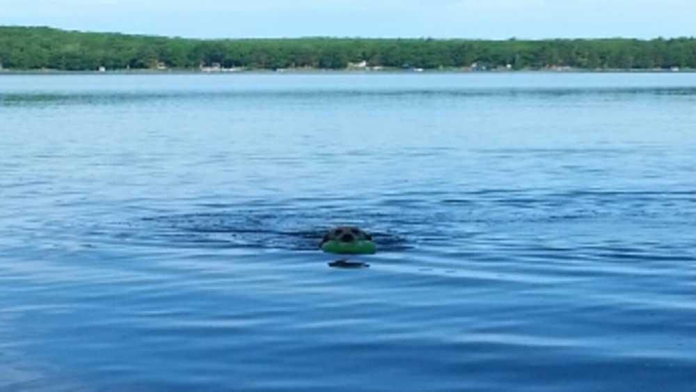 Otsego Lake, MI Topographic Map - TopoQuest