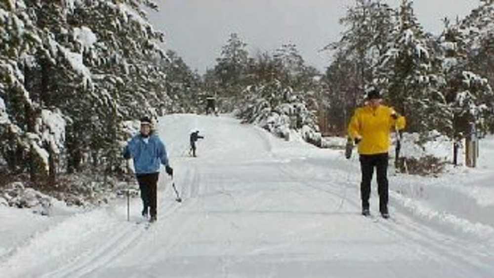 Cross Country Ski Headquarters Crosscountryski Com >> Cross Country Ski Headquarters Michigan