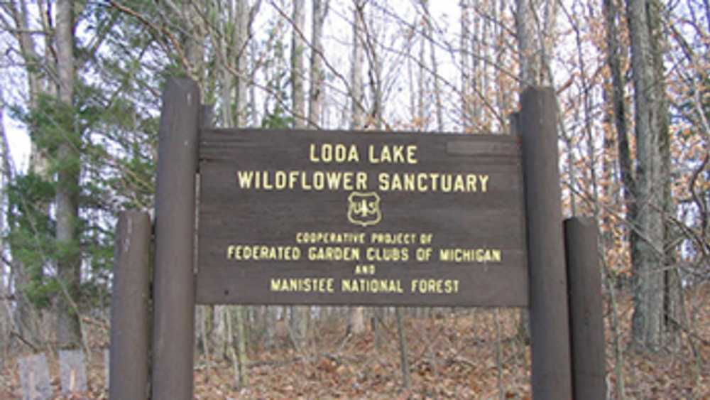 Loda Lake National Wildflower Sanctuary - Photo 1