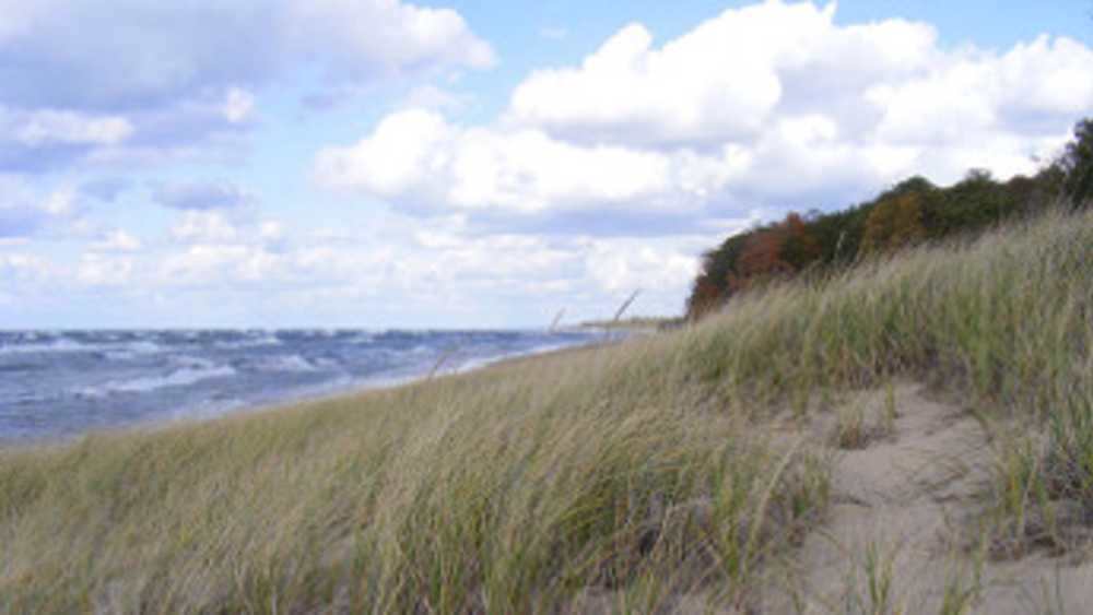 Saugatuck Dunes State Park in Michigan