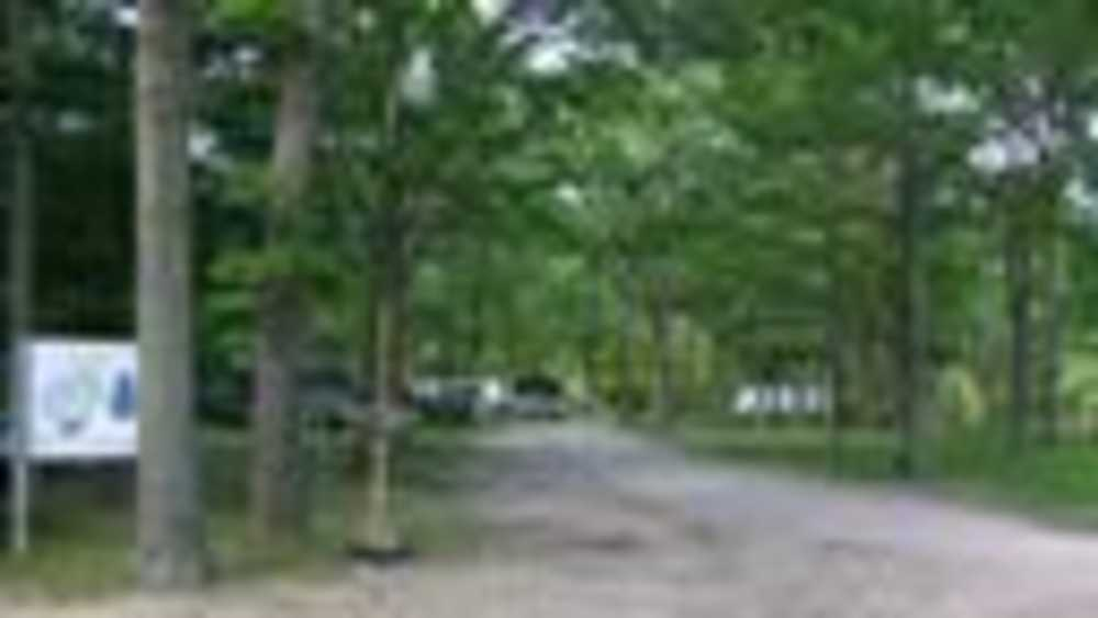 Red Pines Campground Michigan