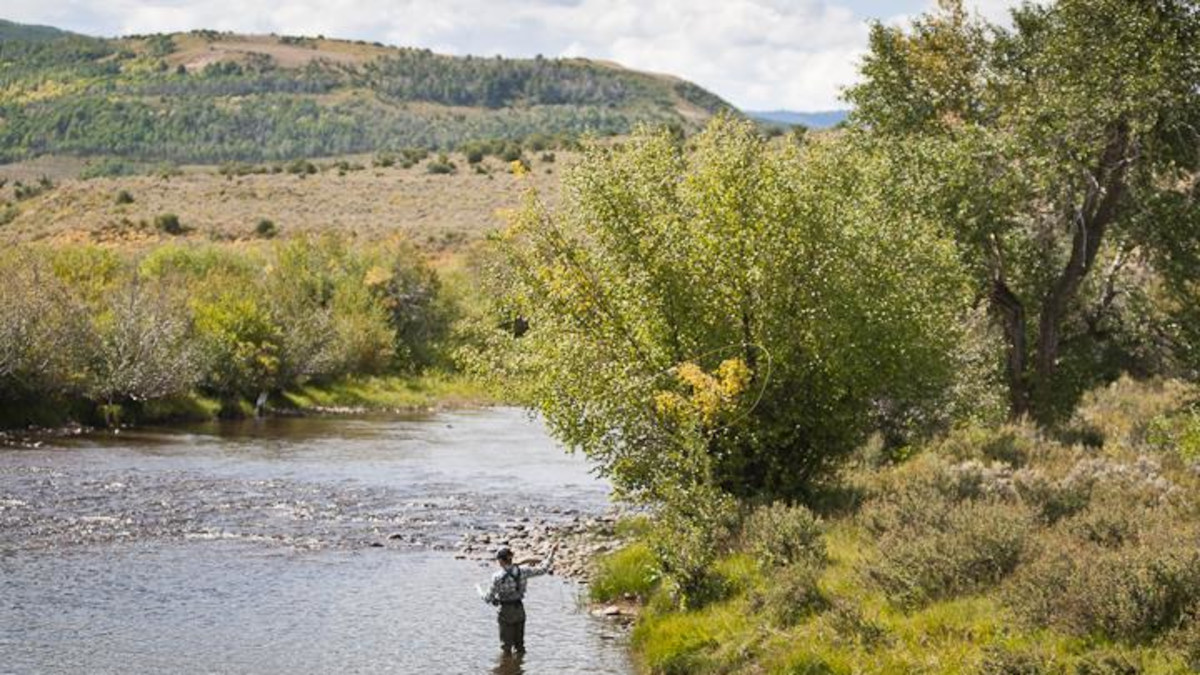 Private Fly Fishing on the Bear River