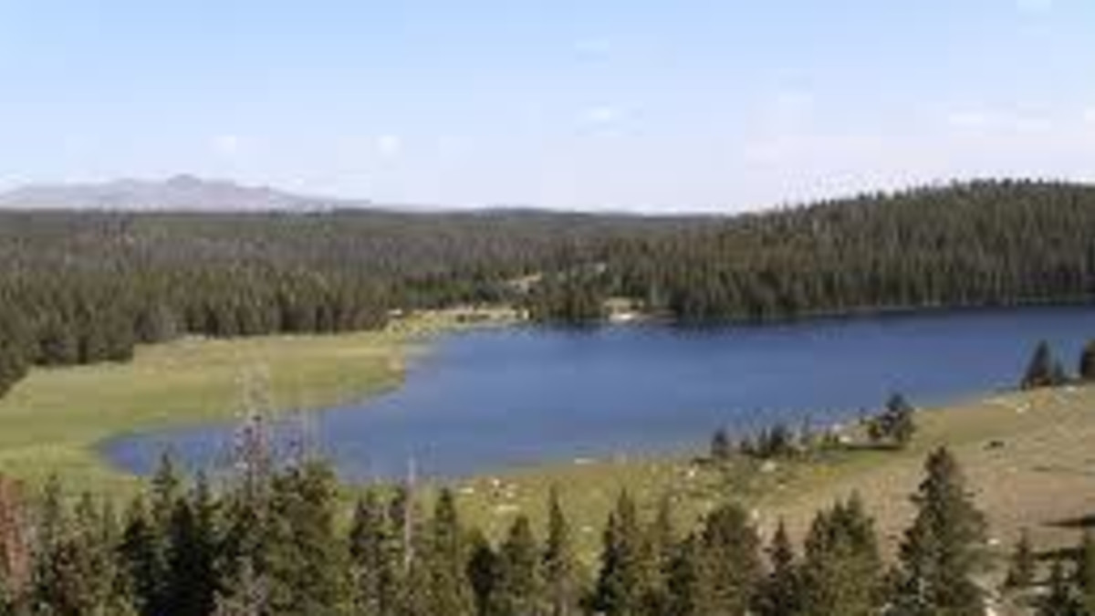 Medicine Lodge Lake Campground - Bighorn National Forest