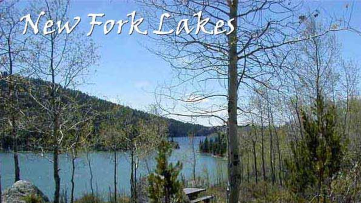 New Fork Lakes Campground