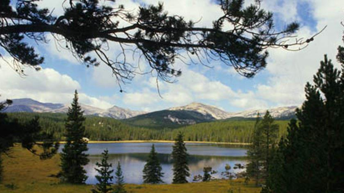 Ranger Creek (Eastside) Campground - Bighorn National Forest