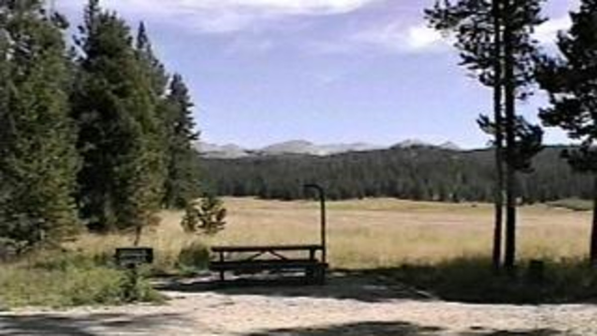 Sitting Bull Campground - Bighorn National Forest