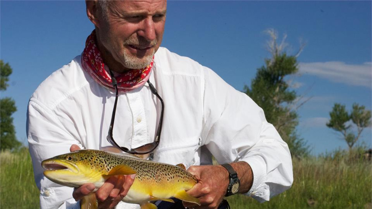 butterscotch brown trout