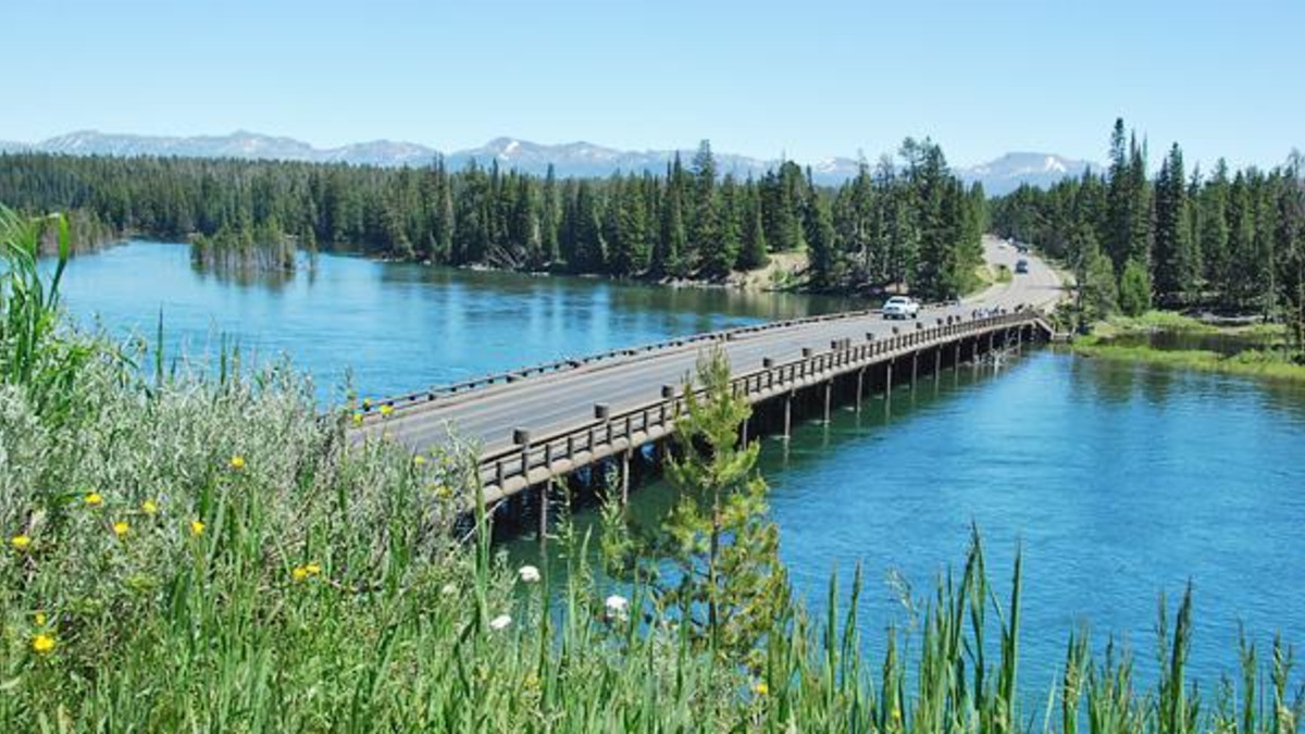Fishing bridge rv park yellowstone national park for Yellowstone lake fishing