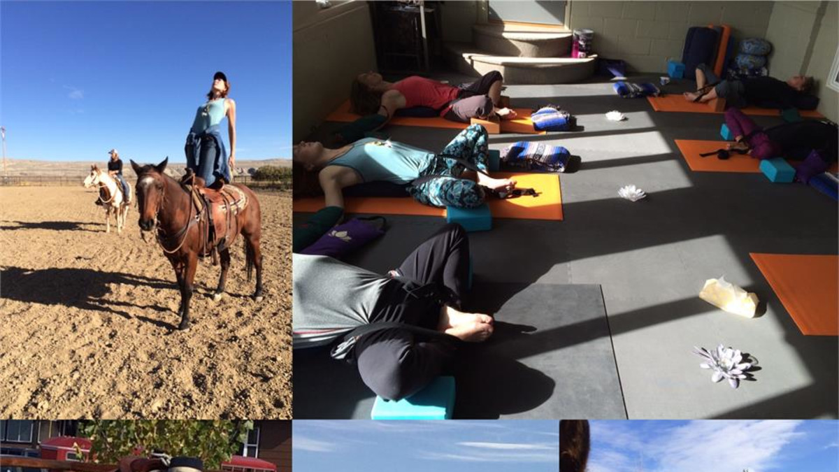 Equine Yoga Clinic 2015