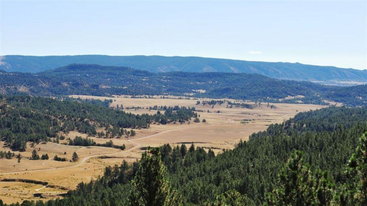 Black Hills Scenic Byway