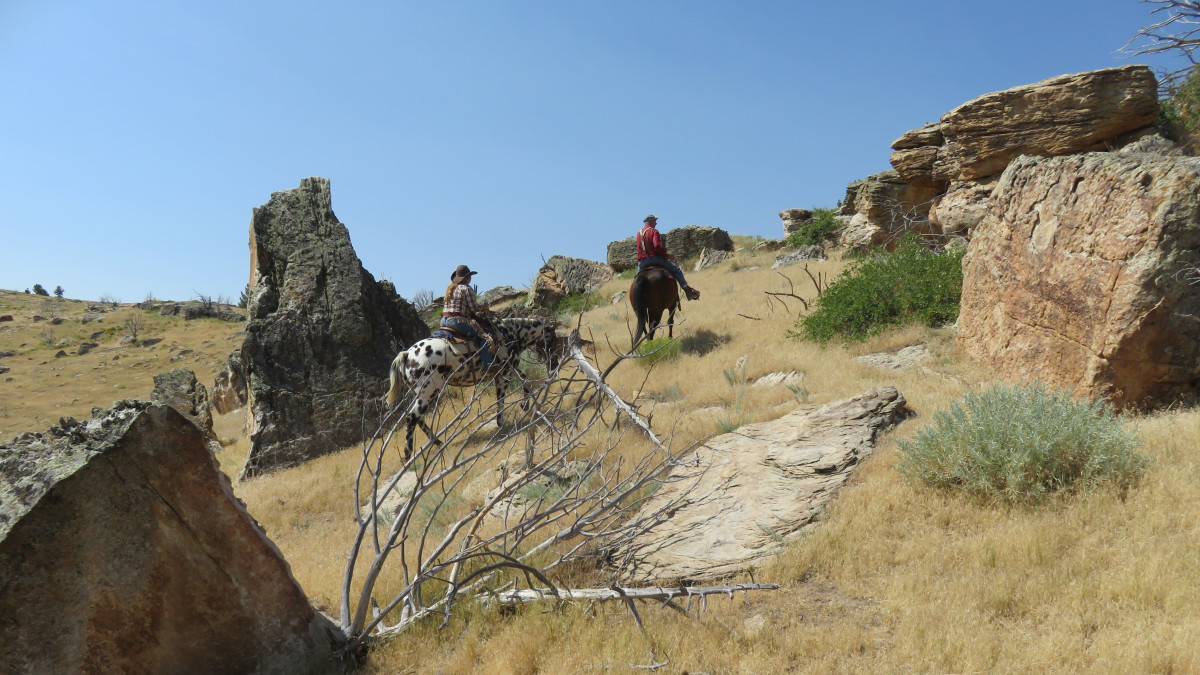 Enjoy the solitude of riding Wyoming hills  with your favorite horsey friend!