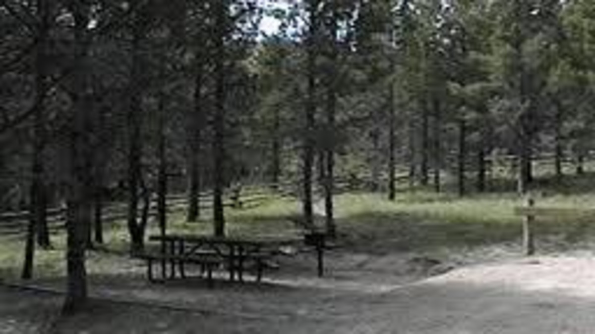 Circle Park Campground - Bighorn National Forest