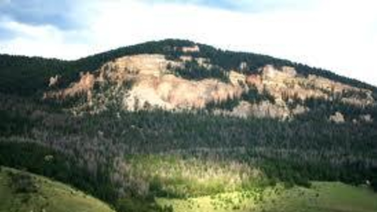 Cross Creek Campground - Bighorn National Forest