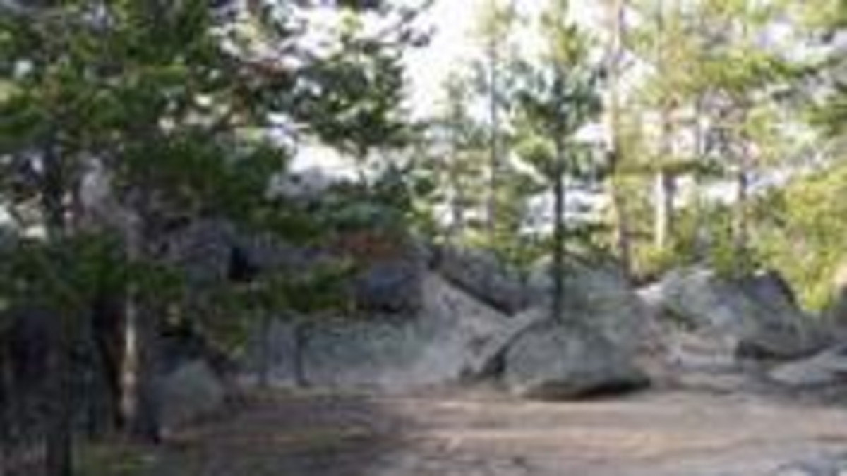 Dead Swede Campground - Bighorn National Forest