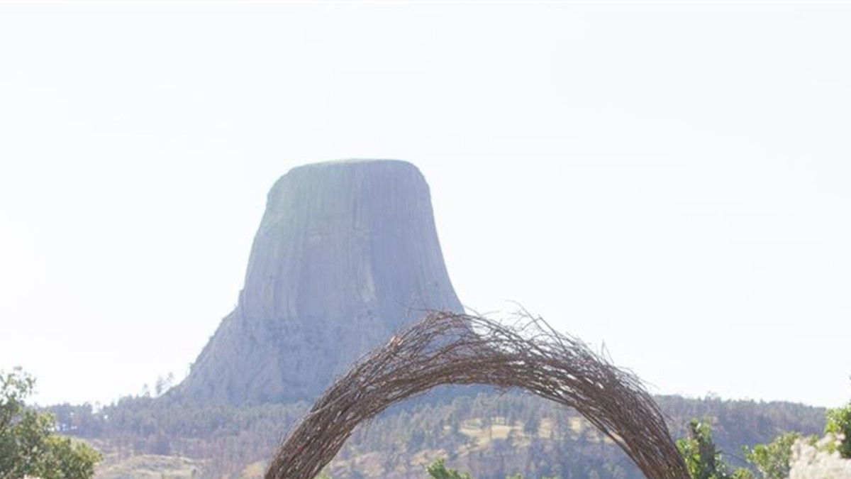Devils Tower Wedding Arch