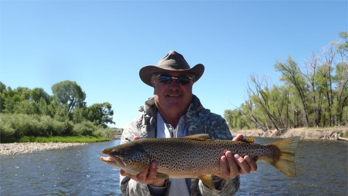 Good Upper North Platte Brown