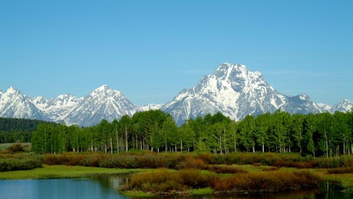 Grand Teton National Park Moose Travel Wyoming That S Wy
