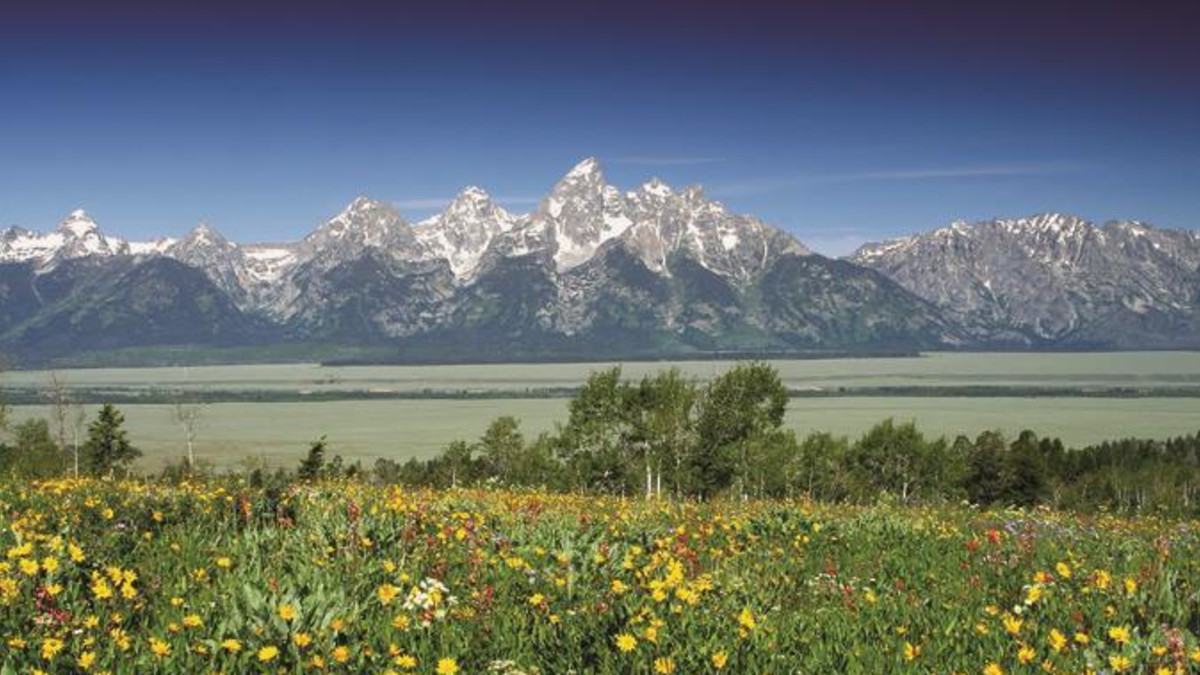 Travel Blog Grand Teton