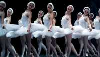 SwanLake_Photo1.jpg