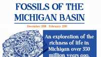 Fossils of the Michigan Basin