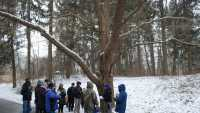 Winter Tree ID Workshop 20180210_web.jpg