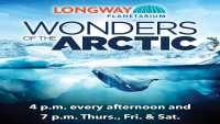 Wonders of the Arctic photo
