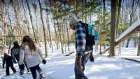 Event- Snowshoeing in the woods