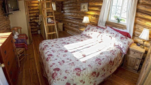 One Room Cabin