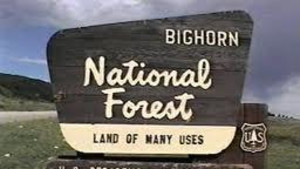 Middle Fork Campground - Bighorn National Forest