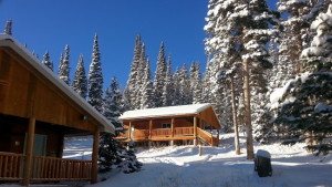 Snow picture of the cabins